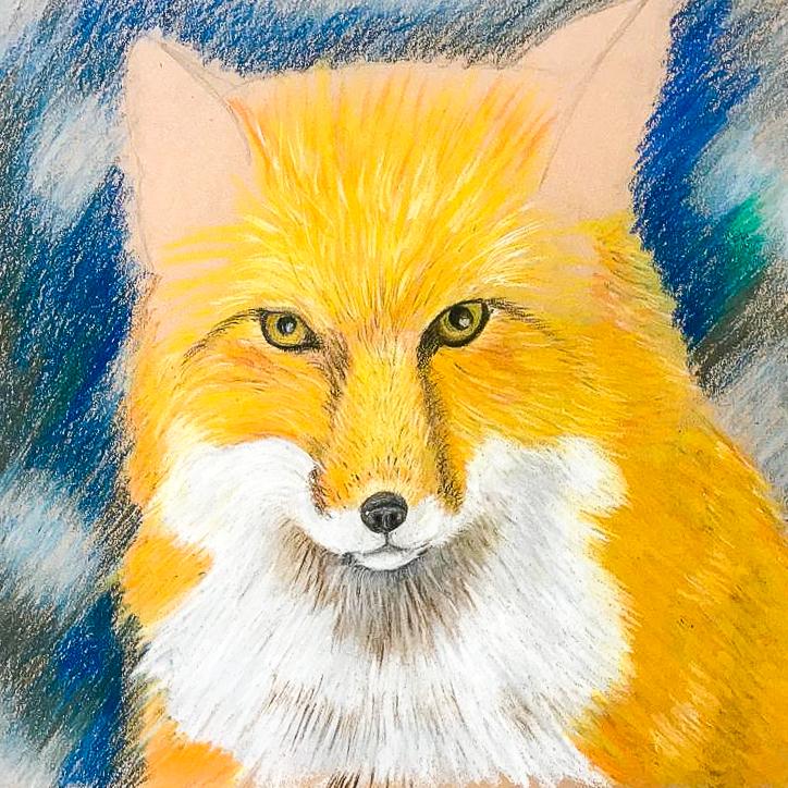 Artzone Senior September Fox Drawing  8-12 y/o