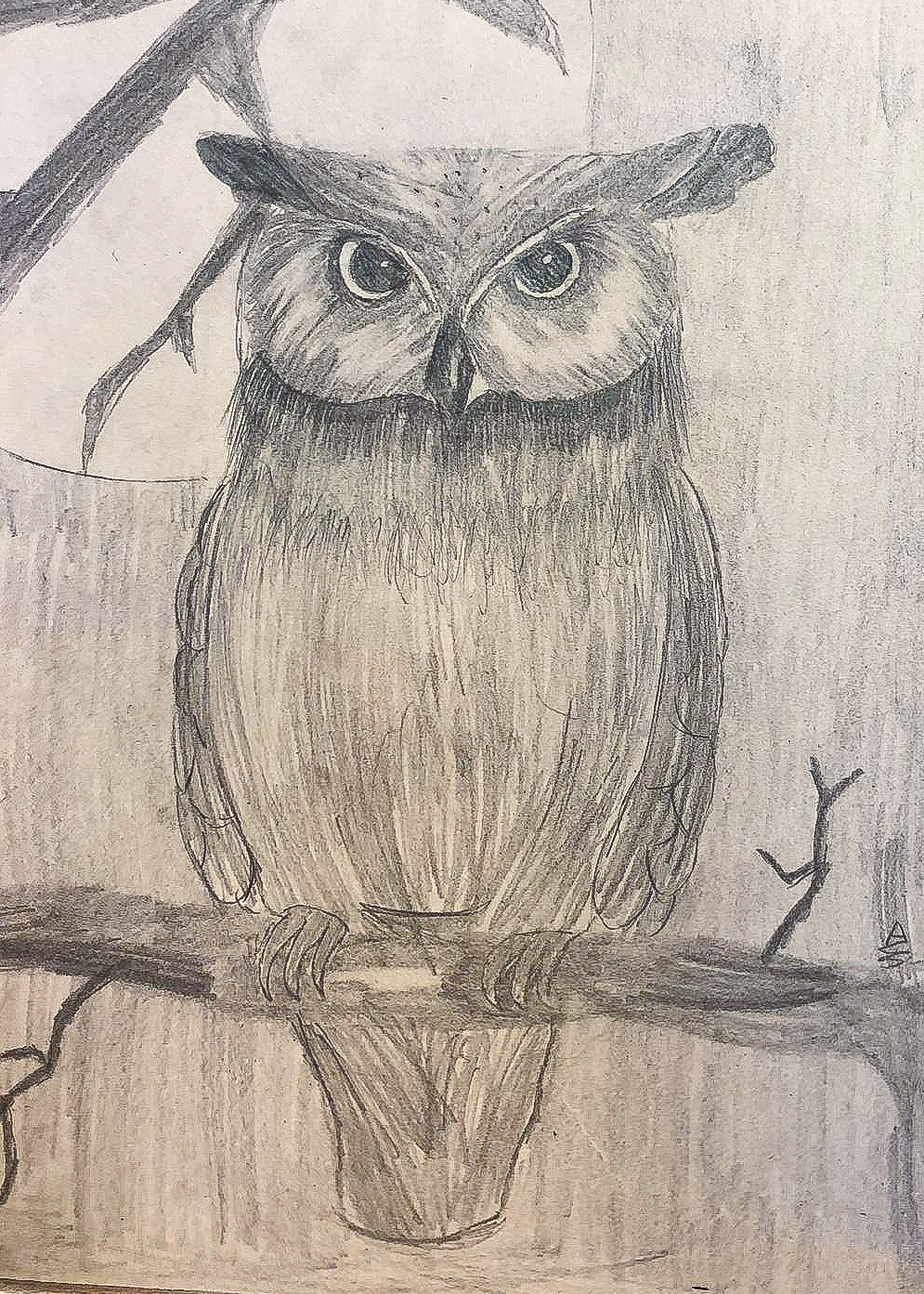 Artzone Senior September Owl Drawing  8-12 y/o