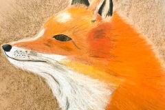 Artzone Senior September Fox Drawing  8-12 y/o